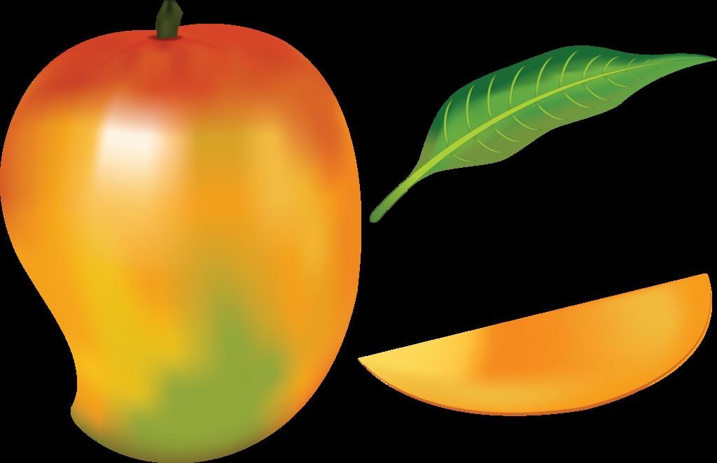 Mango clipart orange fruit On NAVDBEST by NAVDBEST Mango