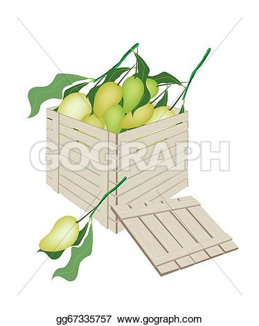 Mango clipart sweet Delivery Art wooden with Clip