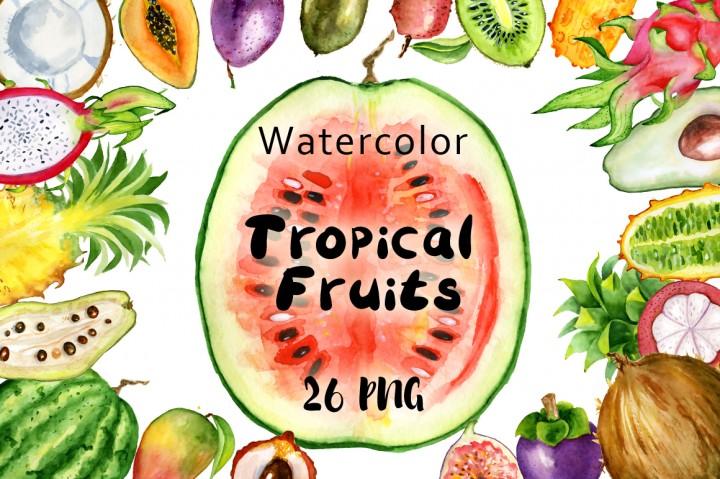 Mango clipart watermelon Fruits Watercolor By Nereia tropical