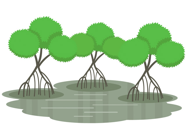 Mangrove clipart Clipart biome Art Free Size: