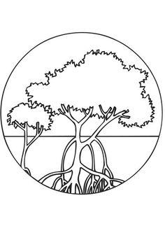 Mangrove clipart  Paintings Pinterest Lessons Art