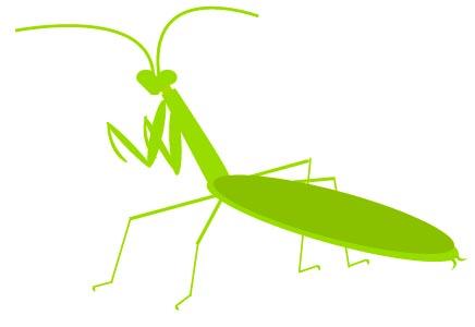Mantis clipart #13