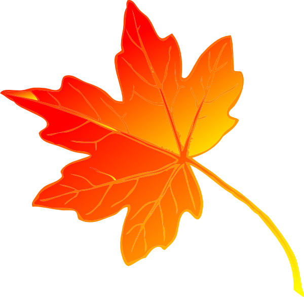 Maple Leaf clipart Free Leaf to Clip Free