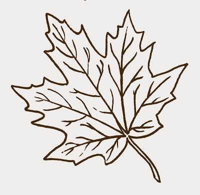 Maple Leaf clipart Leaves Art clip Maple Clip