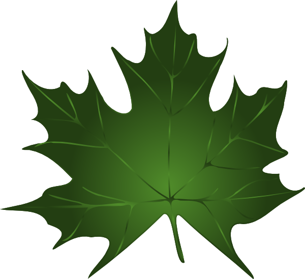 Small clipart maple leaf Download Art image vector Clker