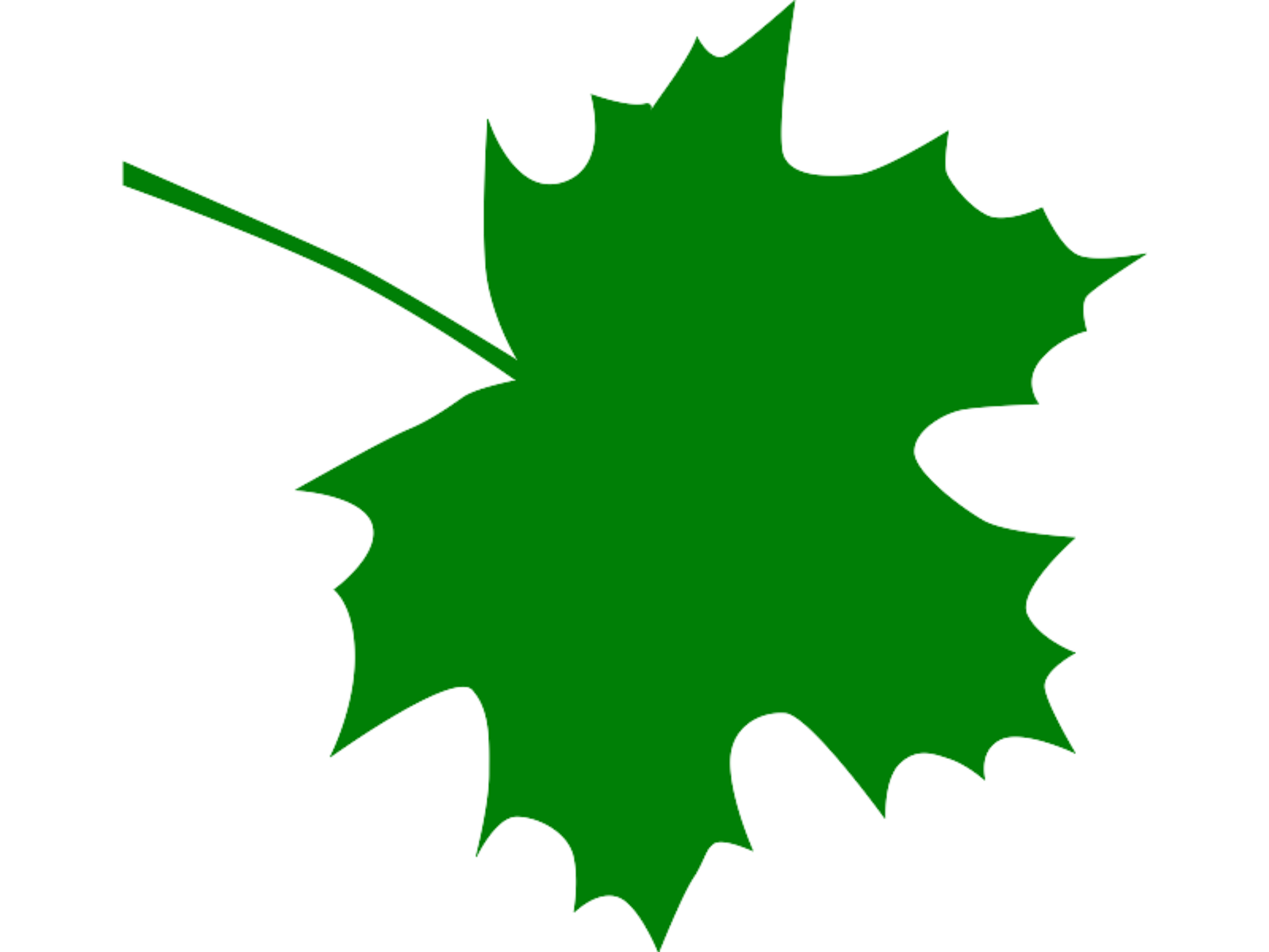 Maple Leaf clipart Art Clipart Images #21153 Green