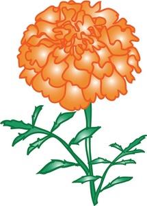 Marigold clipart Clipart Marigold Clipart Marigold Image:
