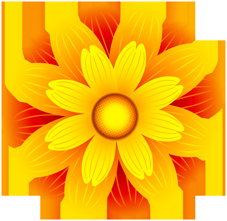 Orange Flower clipart transparent Image Flower  Art full