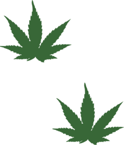 Weed clipart cartoon  Art at Clip com
