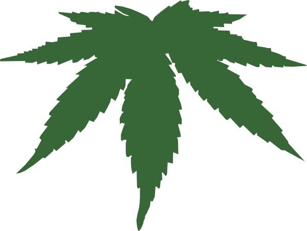 Drawn pot plant reggae Art Leaf Open  Cannabis