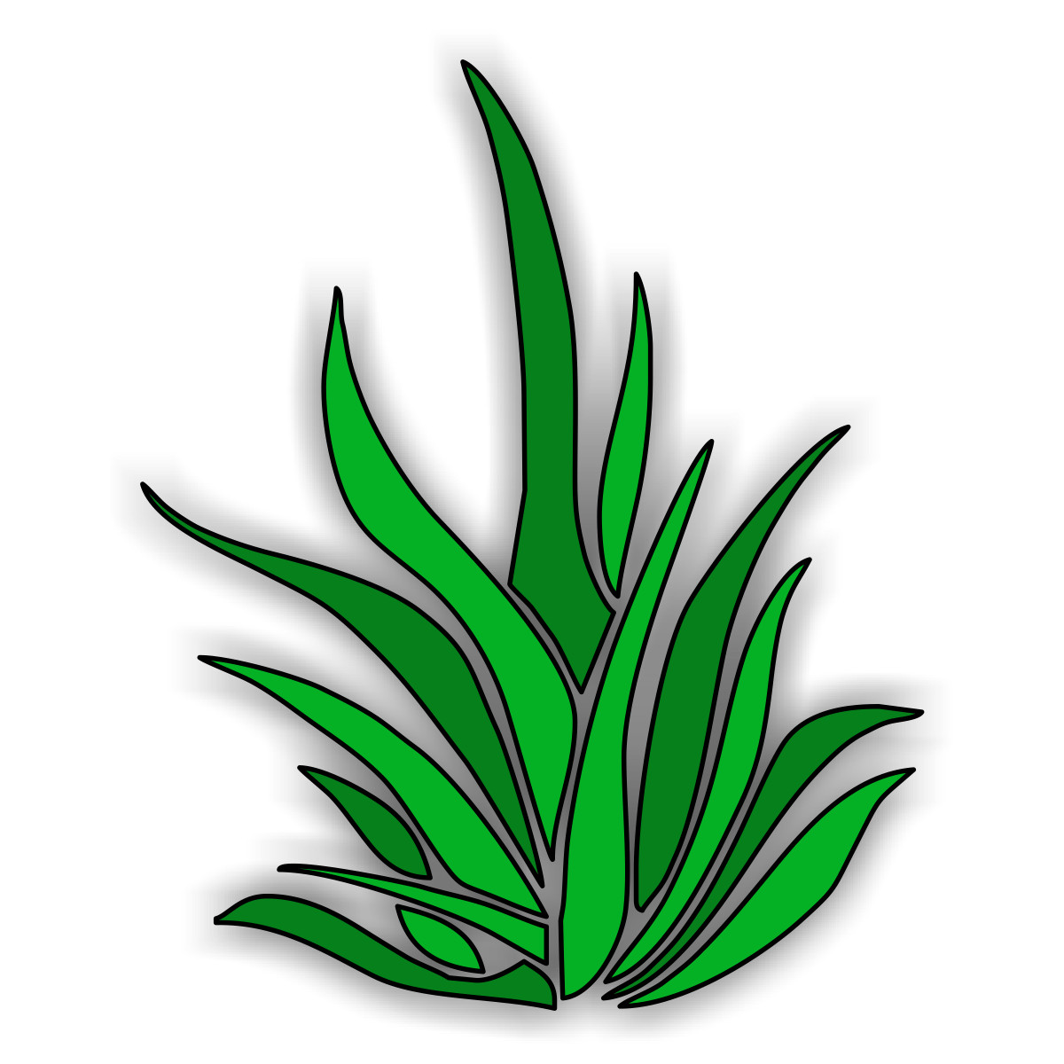 Seaweed clipart seagrass #6