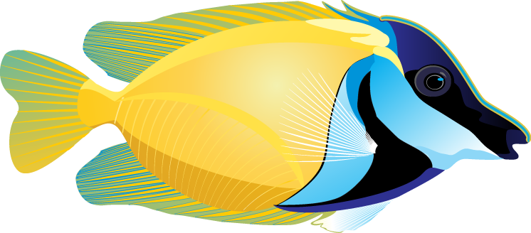 Marine Fish clipart Clipart Images Clipart Panda Fish