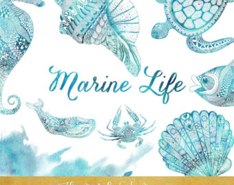 Marine Life clipart blue Clipart Etsy INSTANT Life Shells