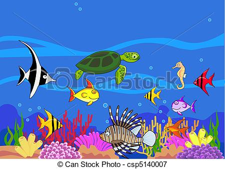 Drawn sea life aquatic animal Sea life life of life