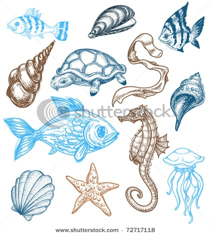 Marine Life clipart deep sea Marine about life this 26