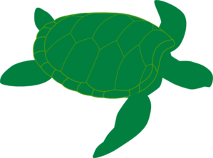 Marine Life clipart green turtle Marine clip Clip com art