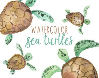 Marine Life clipart green turtle Watercolor Clipart clipart Tropical Sea