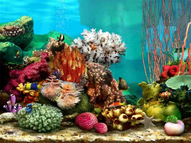 Aquarium clipart ecosystems Save 3D save environment Pakistan