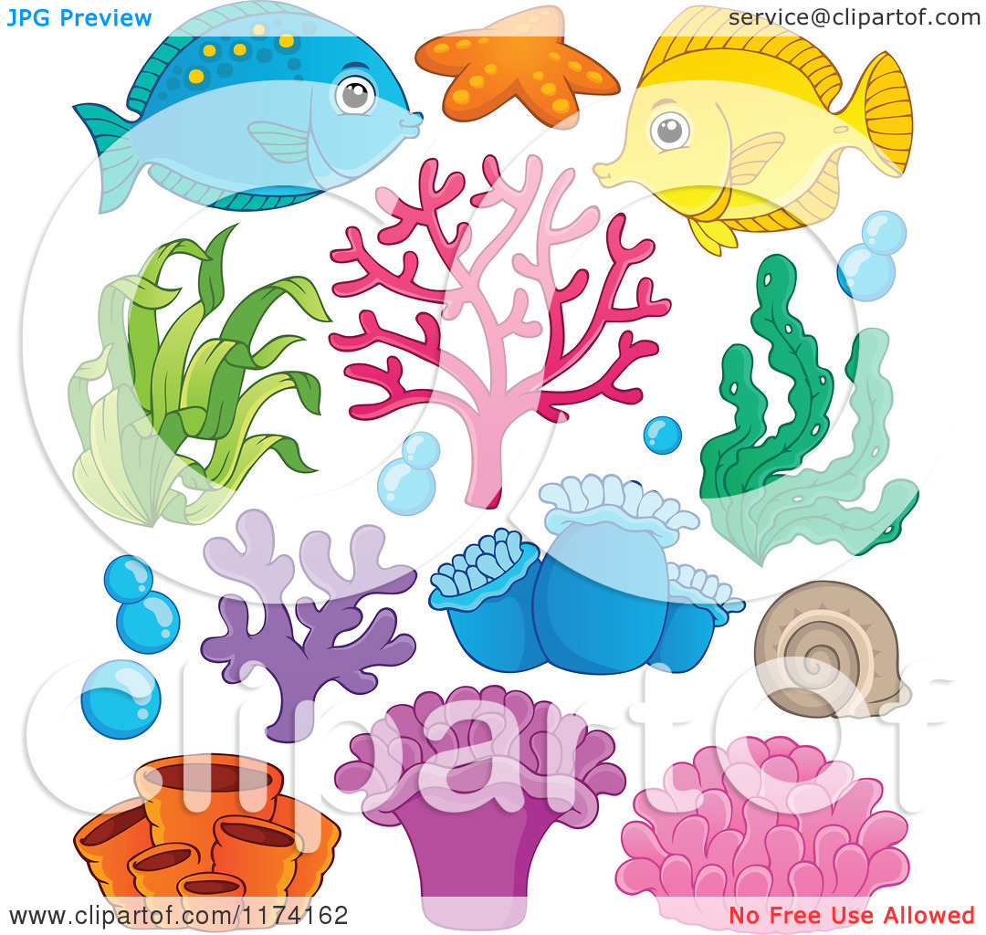 Marine Life clipart sea plant Marine Marine Plant Download Plant