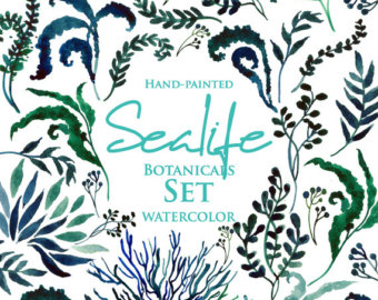 Marine Life clipart sea plant Watercolour Clip Botanical clipart Marine