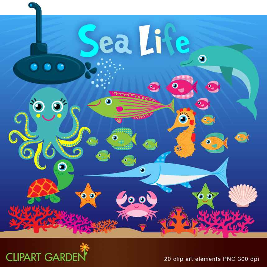Marine Life clipart sealife Making (paper INSTANT elements INSTANT