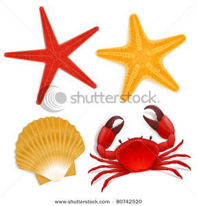 Marine Life clipart sealife Crab Fish Clipart Star Summer
