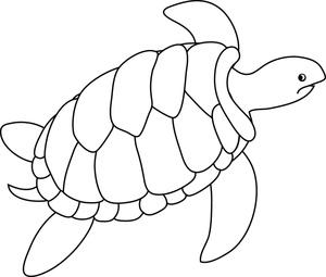 Marine Life clipart turtle swimming Turtle Sea turtle clipart Sea