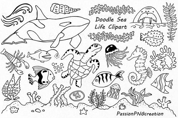 Marine Life clipart under sea EPS Ocean Sea on life
