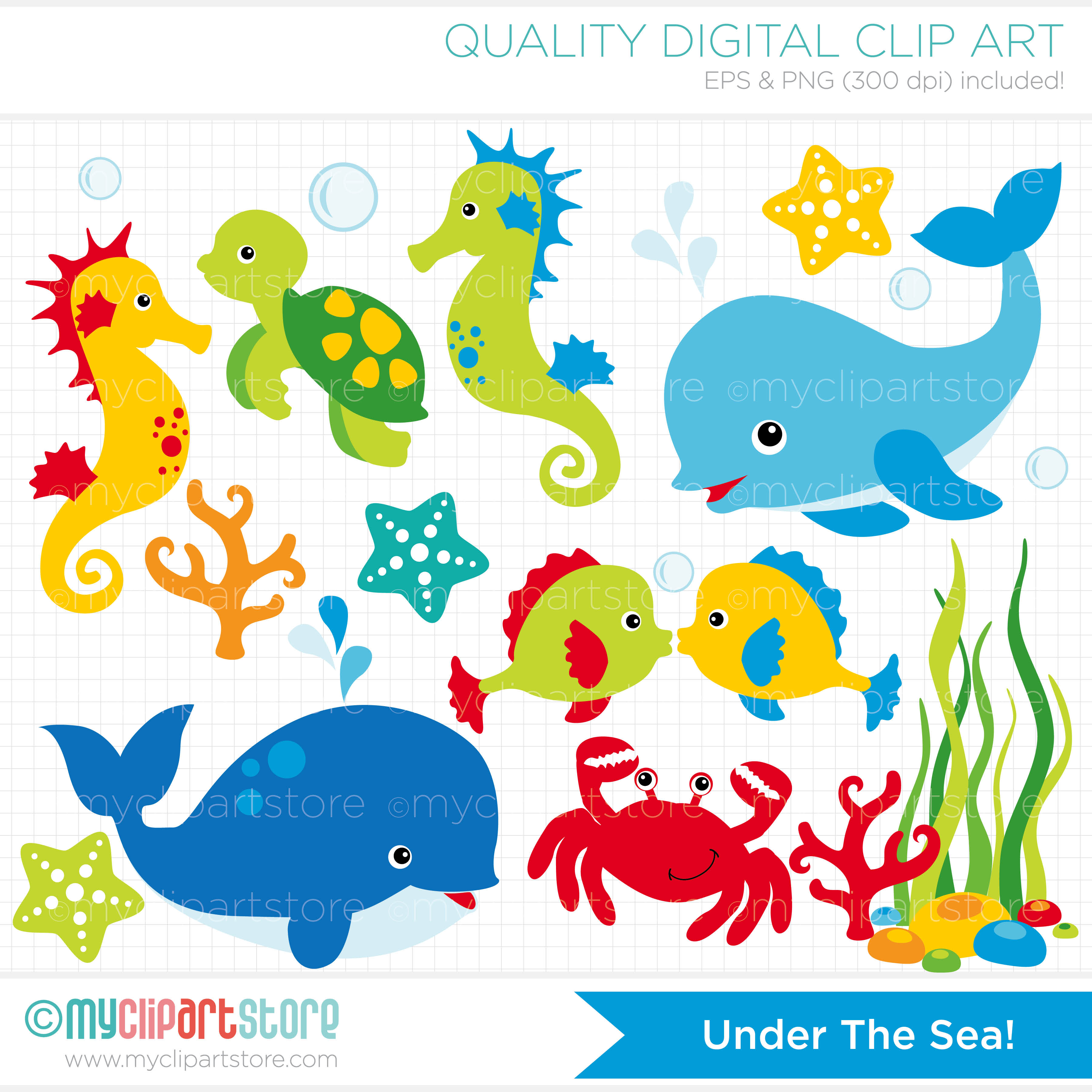 Marine clipart ocean animal #10
