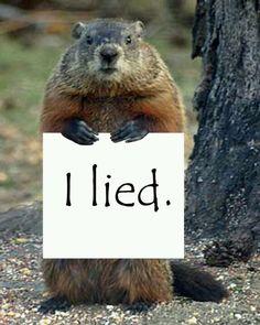 Marmot clipart Fesses Day!  Phil Punxsutawney