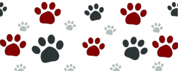 Paw clipart paw print 3 pdclipart print vector com