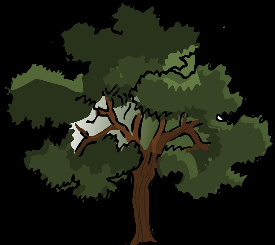 Tree clipart oak tree Clipart Art Clip Trees Clip