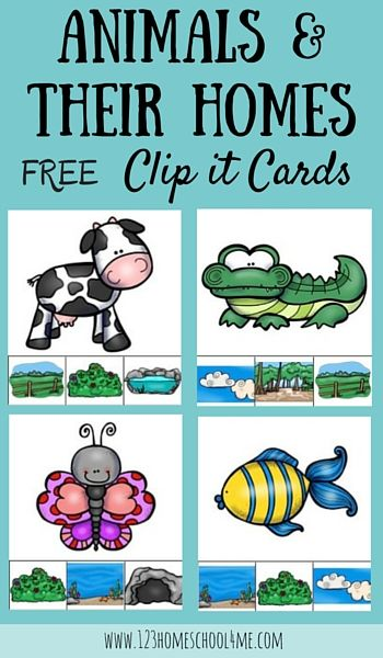 Mars clipart kindergarten science About images Science Kids and