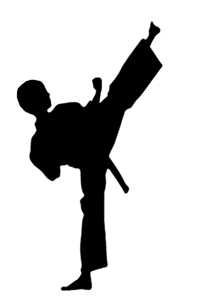 Martial Arts clipart #9