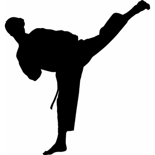 Martial Arts clipart #4