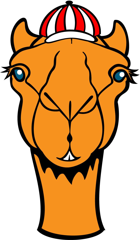 Moving clipart camel Camel face (19+) art Art