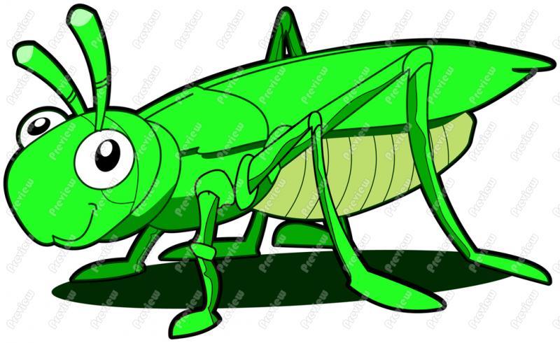Mask clipart grasshopper Royalty Clipart grasshopper  Collection