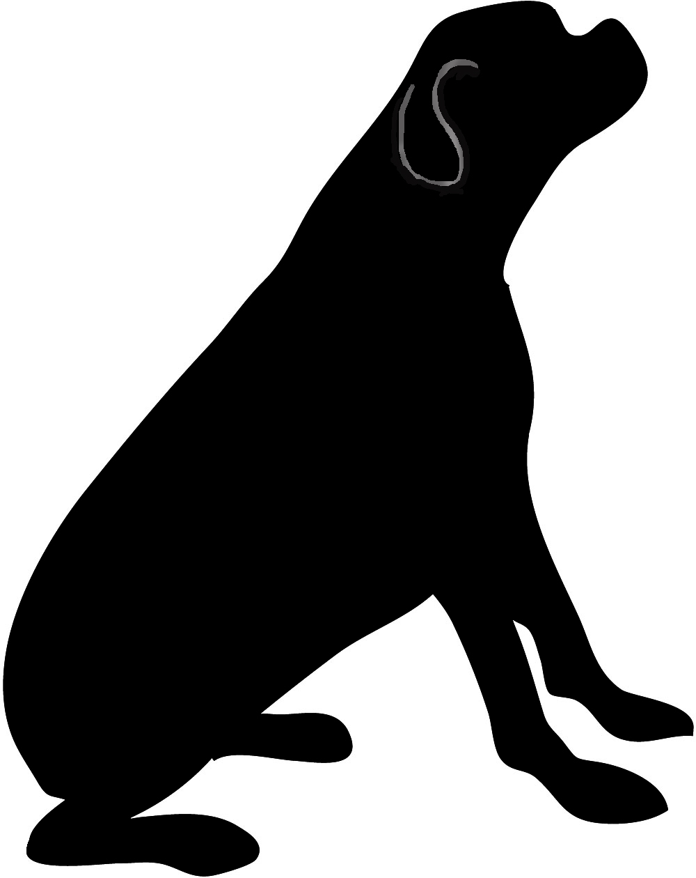 Sea Lion clipart animal shadow #6