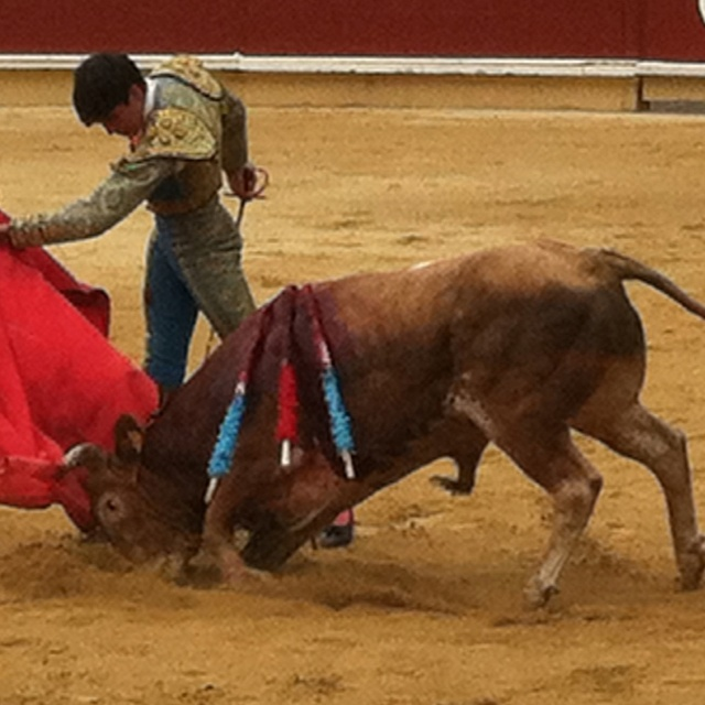 Matador clipart spain Fighters Bull and ArtSpanishRecordedWood flamenco
