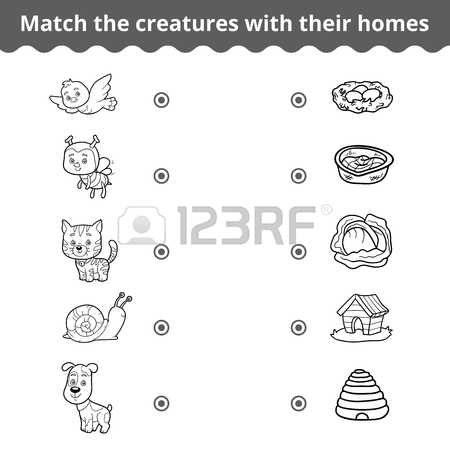 Collection Cliparts Animals match 52