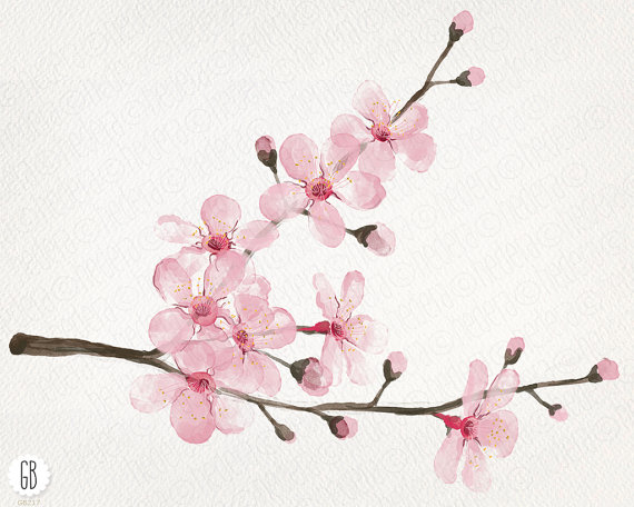 Cherry Tree clipart watercolor Invite watercolor cherry blossom hand