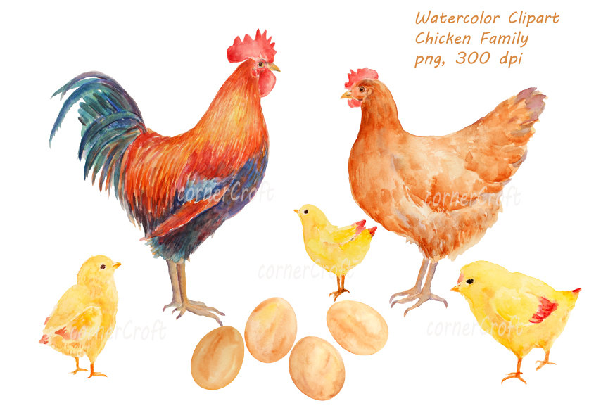 Rooster clipart hen #1