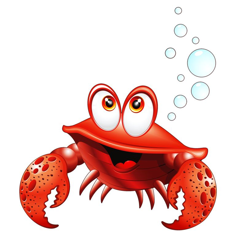 Crustacean clipart sea star Best smiley Pinterest Фотки images