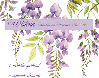 Wisteria clipart painting Clipart clip flower Etsy art