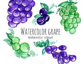 Grape clipart frut Clip Art Fruit Art Watercolor