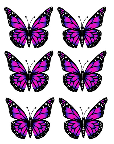 Turquoise clipart purple butterfly #11