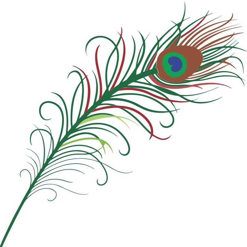 Pen clipart peacock feather Free Clipart Clipart clipart Clipart