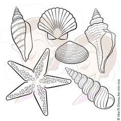 Mauve clipart seashell Birthday  art Sea Pictures