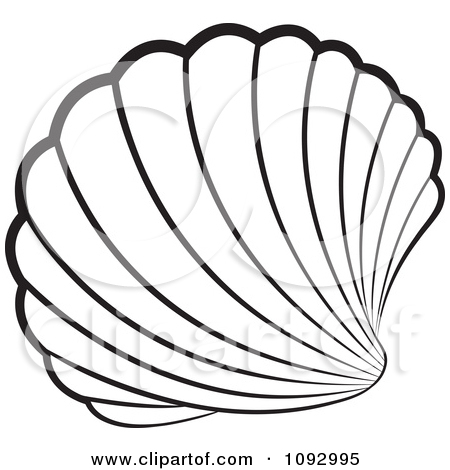 Mauve clipart seashell Free White Shell Royalty And
