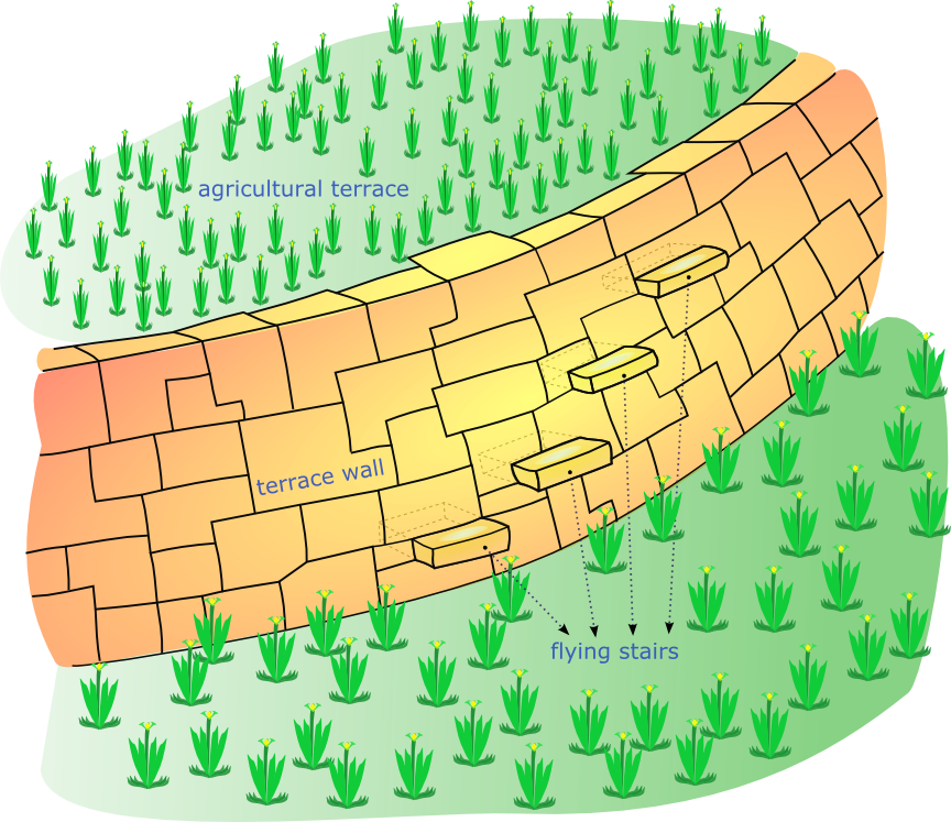 Rice Terrace clipart agriculture field #2